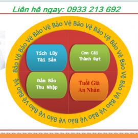 Tư Vấn Bảo Hiểm Nhân Thọ Dai-ichi Life Việt Nam.