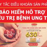 Quy tắc điều khoản sản phẩm bảo hiểm hỗ trợ điều trị bệnh ung thư của Dai-ichi